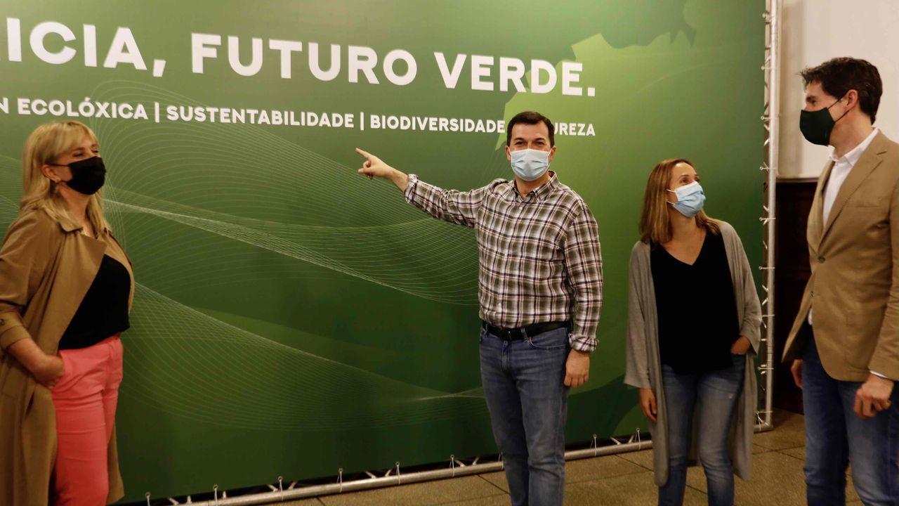 Gonzalo Caballero presentando este sábado las propuestas del PSdeG en materia de ecología y sostenibilidad