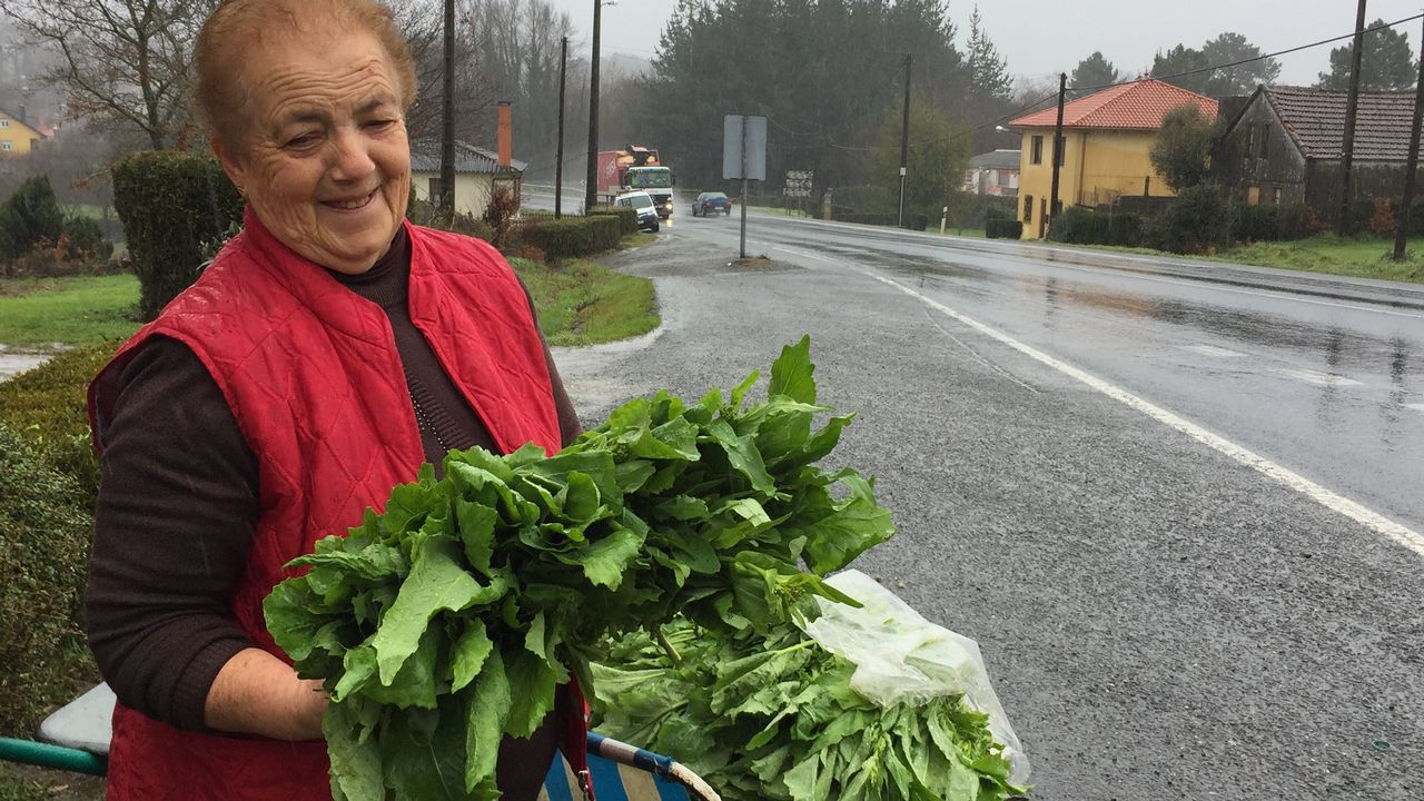 Celsa e vende sus grelos a pie de carretera desde hace años.