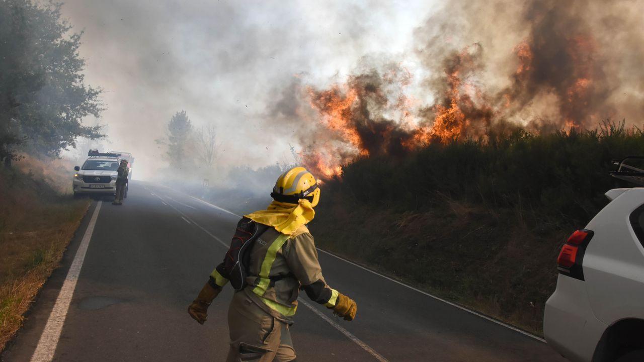 Incendio forestal en Rodeiro