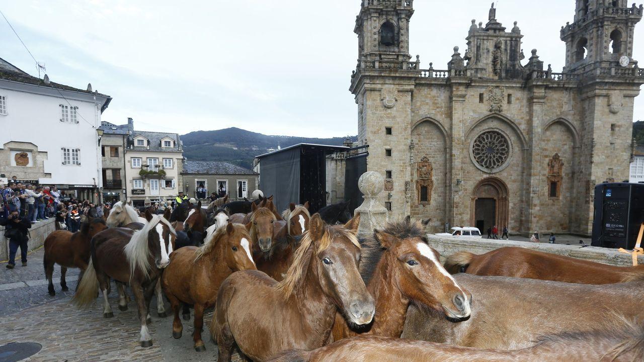 La imagen de la tradicional bajada de caballos (fotografía de 2019) no se verá este año