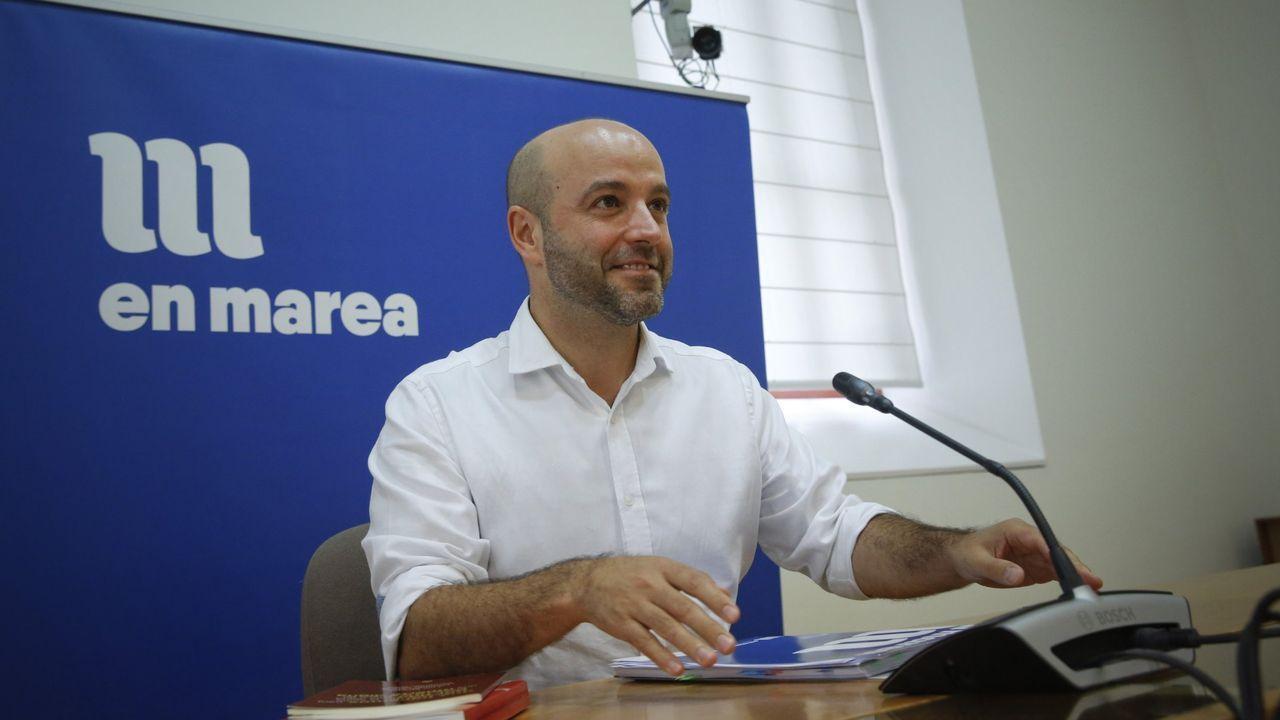 El portavoz del actual Grupo Mixto, Luís Villares