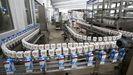 La industria láctea copa los primeros puestos en facturación empresarial en Lugo