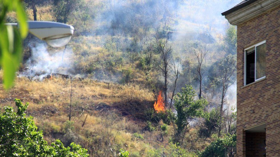 «El parque da un poco de pena, porque está sucio».El plan de prevención de incendios delimita las franjas de seguridad en cada pueblo de O Barco
