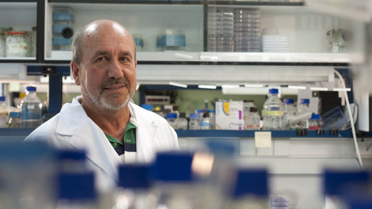 El nuevo test sera más fiable que las pruebas rapidas de anticuerpos