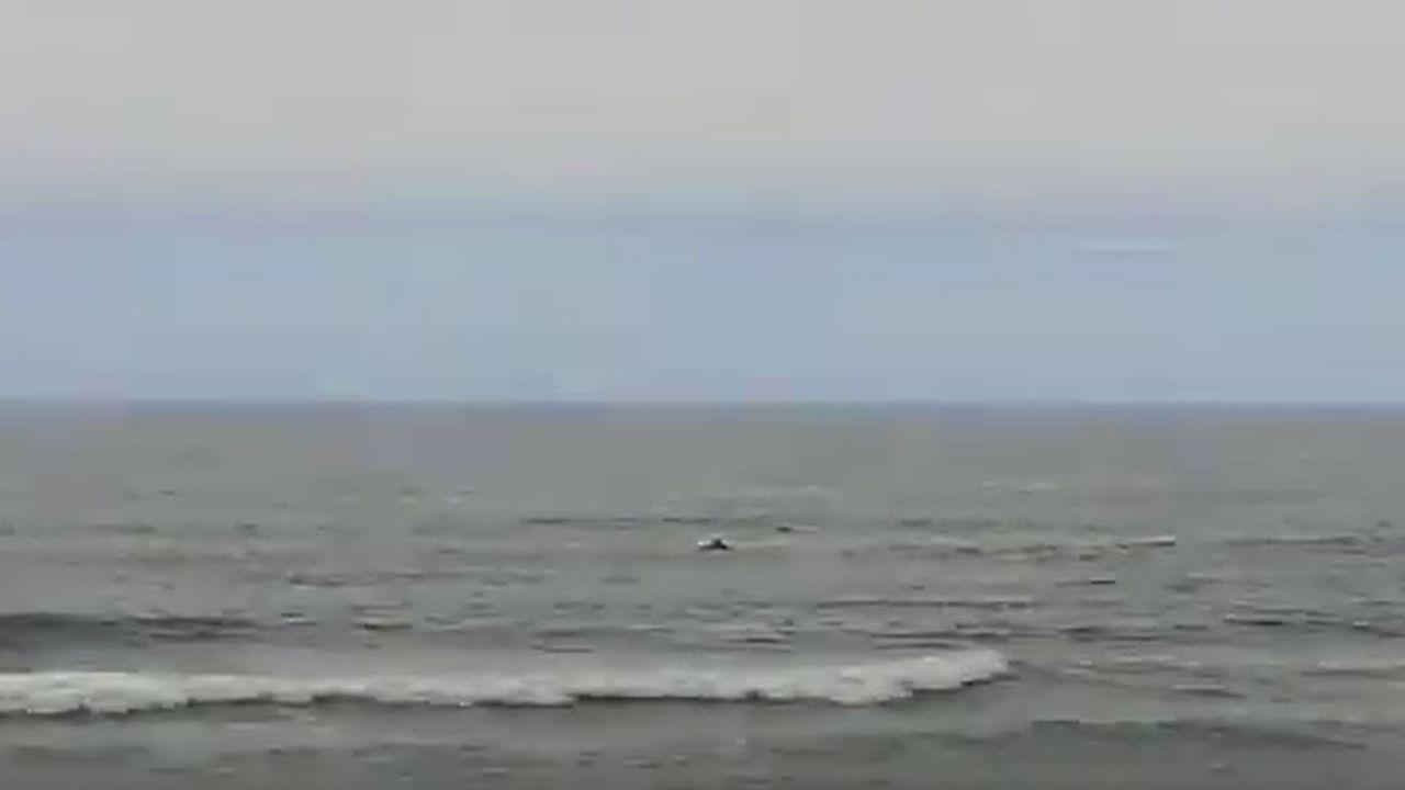 Una manada de delfines visita la playa de Salinas.La impresionante ballena varada en Tapia pesaba 47 toneladas