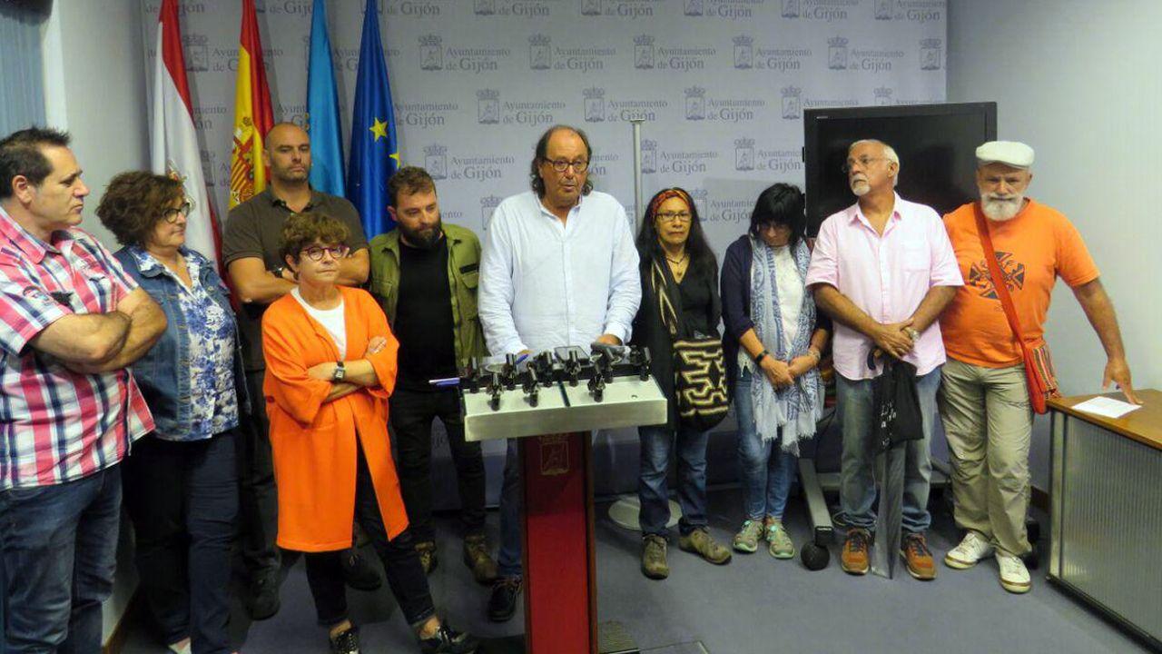 Representantes de las ONGs y Mario del Fueyo, en una comparecencia