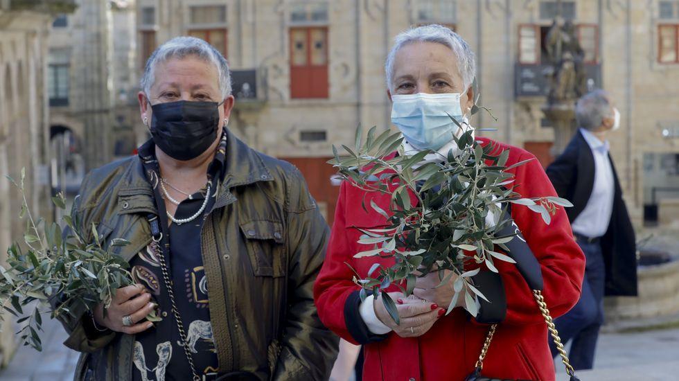 Resiste a la pandemia en Compostela la tradición del olivo y las palmas del domingo de Ramos.Na catedral de Mondoñedo restaurarase o conxunto mural do presbiterio e da nave central