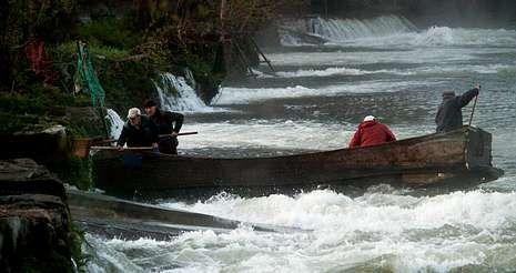 Nas pesqueiras de As Vellas, os pescadores empregan unha barca para botar e levantar as redes nos boquetes do río Ulla.