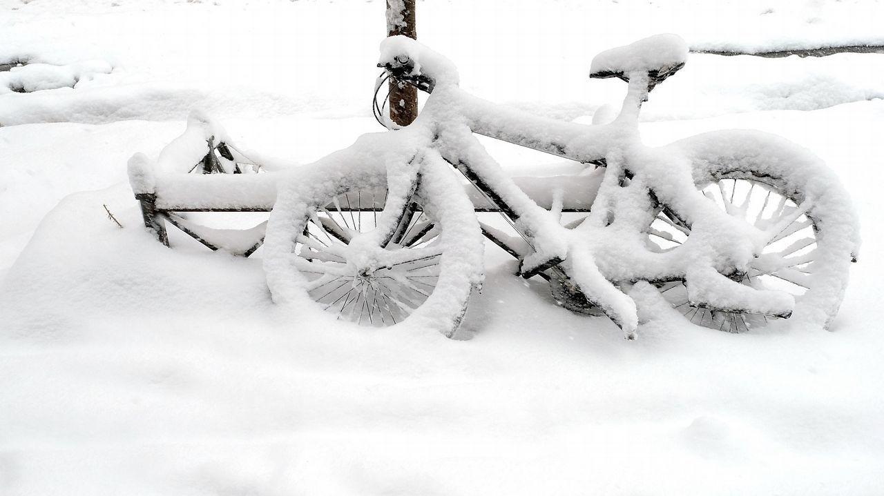 La nieve lo cubre todo en Nueva York