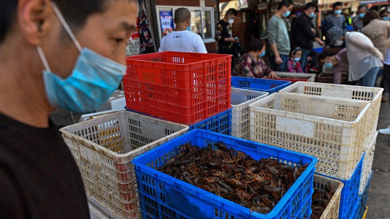 Mili.Imagen de un mercado húmedo en Wuhan