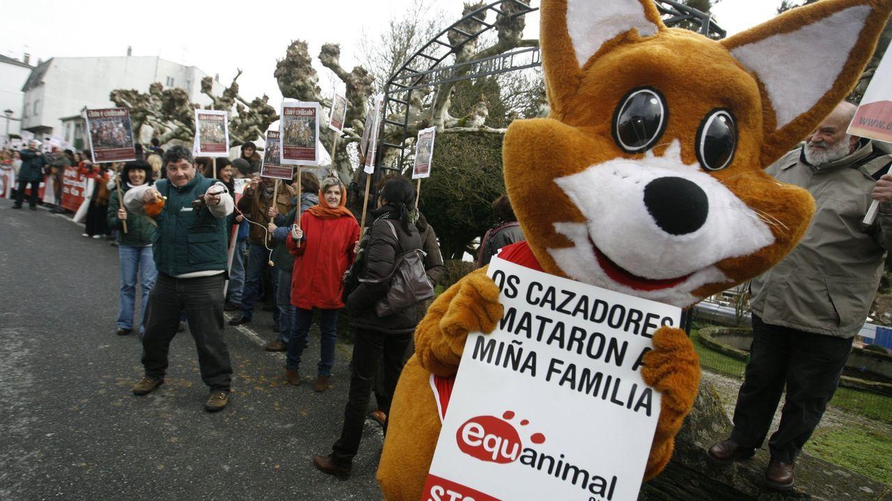Manifestación de un grupo de ecologistas contra la caza del zorro hace años