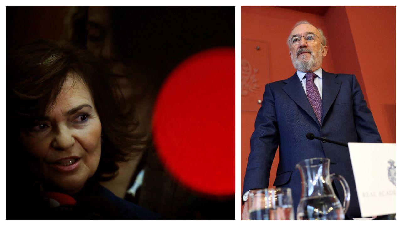 La vipresidenta del Gobierno Carmen Calvo hizo una primera valoración crítica del informe de la RAE, cuyo contenido explicó el director de la Real Academia, Santiago Muñoz Machado