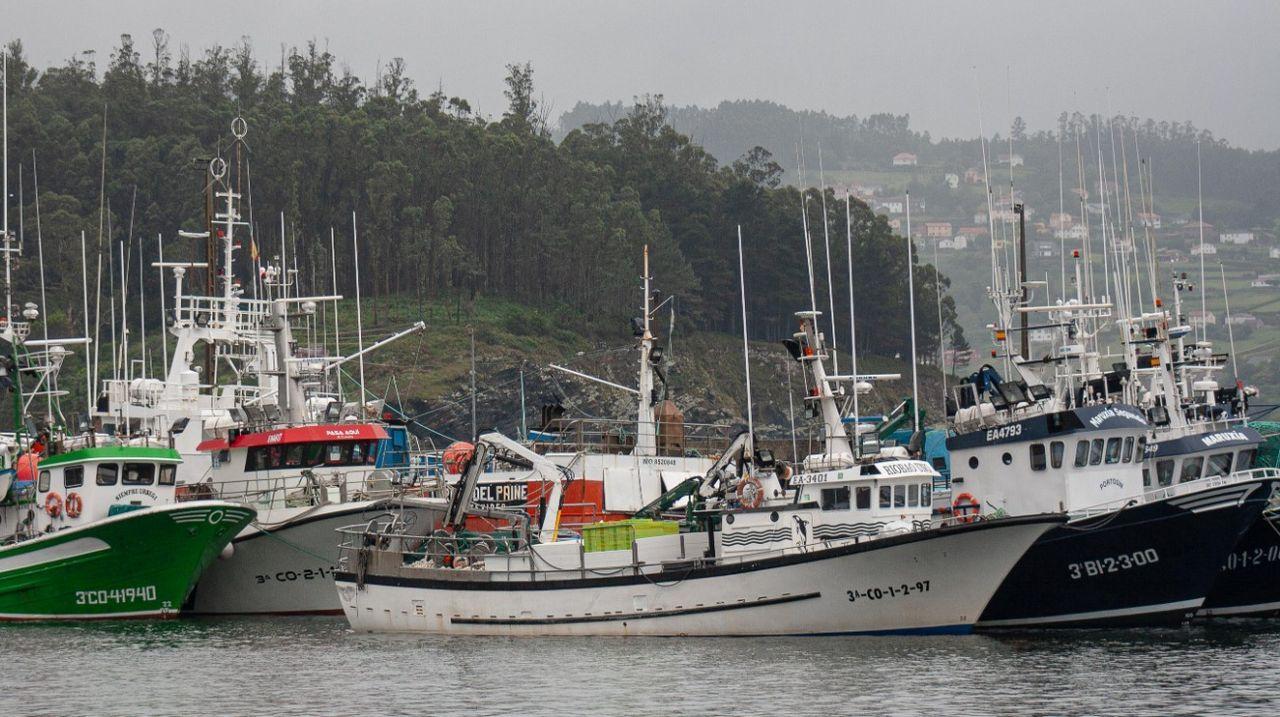 Inauguración exposición  No ronsel do Camiño .Las embarcaciones que navegaban próximas al Sempre Güeto permanecen amarradas en el puerto de Cedeira, donde atracaron horas después de la tragedia.