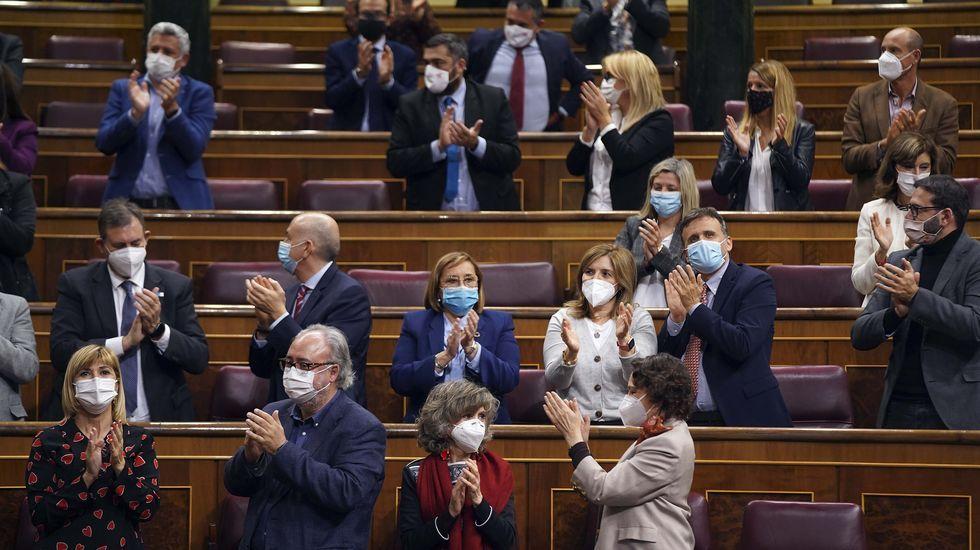 La bancada socialista (en primera línea, segundo por la derecha, el gallego Guillermo Meijón, ponente de la ley) aplaude la aprobación de la nueva ley