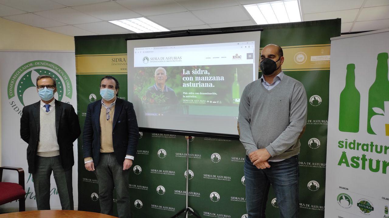 El Consejo Regulador DOP Sidra de Asturias da el paso digital para ayudar a los lagares ante la baja actividad hostelera