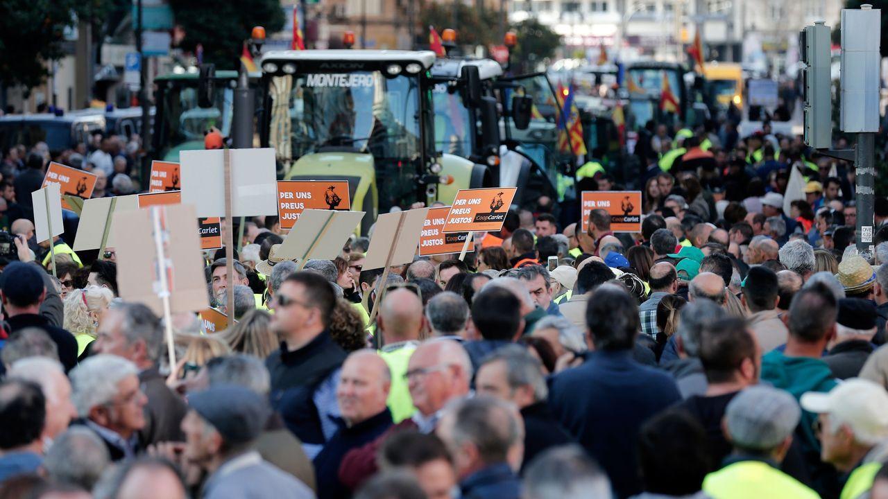 Los agricultores vuelven a sacar los tractores a la calle.Feijoo, junto a varios conselleiros en la reunión de su consello en A Estrada. Varios miembros del Gobierno gallego siguieron el encuentro por videoconferencia