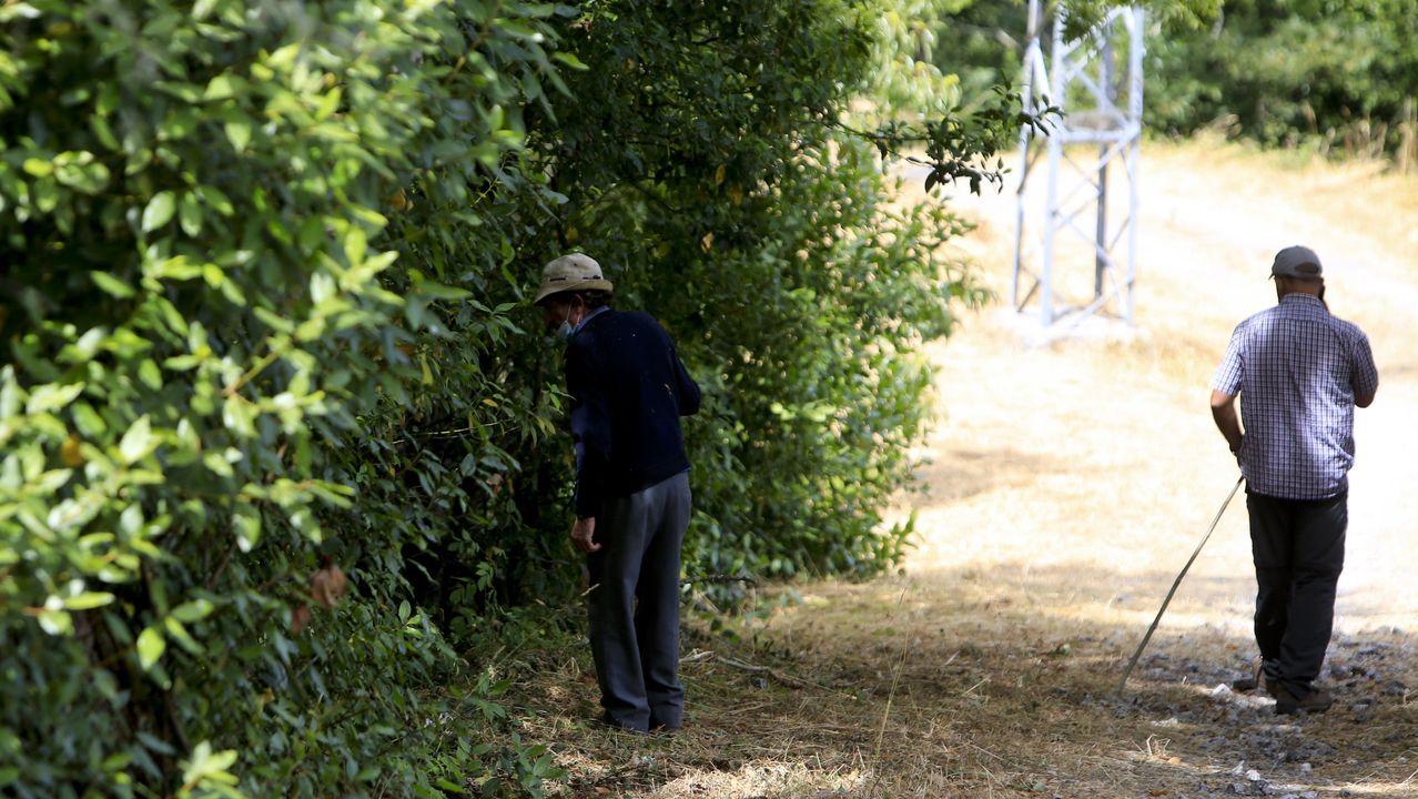 Sesenta días de alarma.Vecinos de Baleira buscando al desaparecido