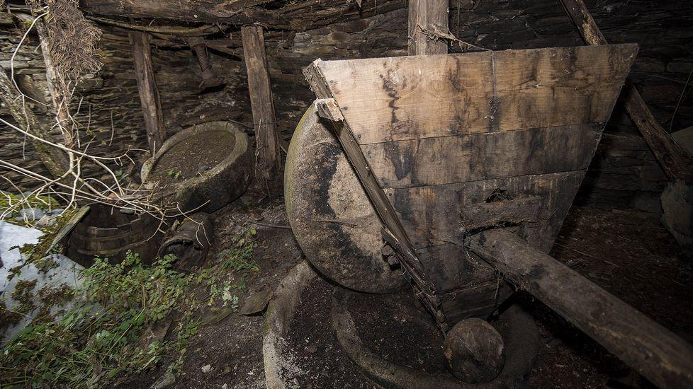 El molino llamado de la señora Concha se conserva en mal estado. En la imagen, recipiente de madera adosado a la rueda que se usaba para verter las aceitunas en la pila del molino