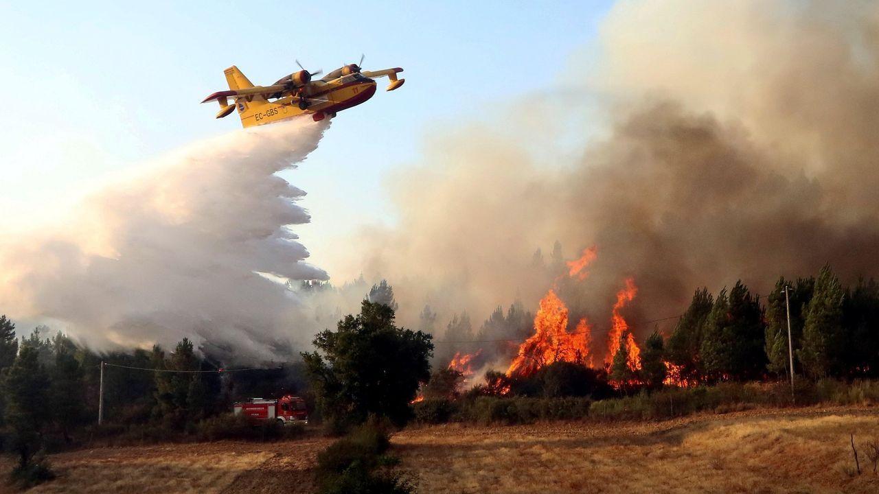 Un avión extingue un fuego en la localidad de  Sao Vicente da Beira