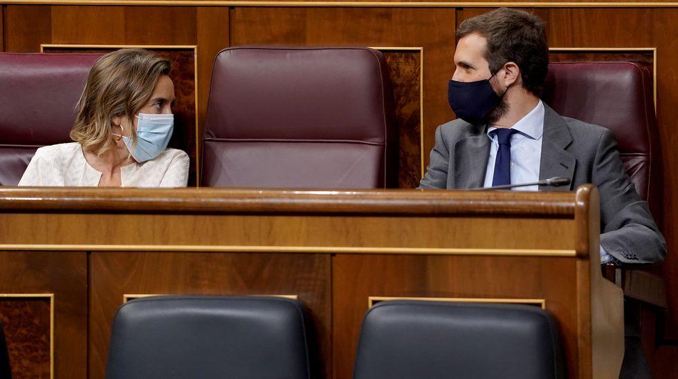 Pablo Casado (derecha) presentó las enmiendas del PP a la Lomloe