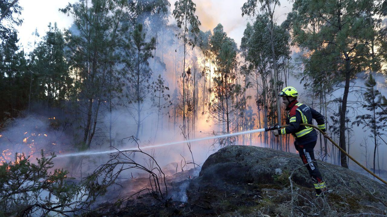 Incendio forestal enCornazo.Incendio forestal en Aguasantas