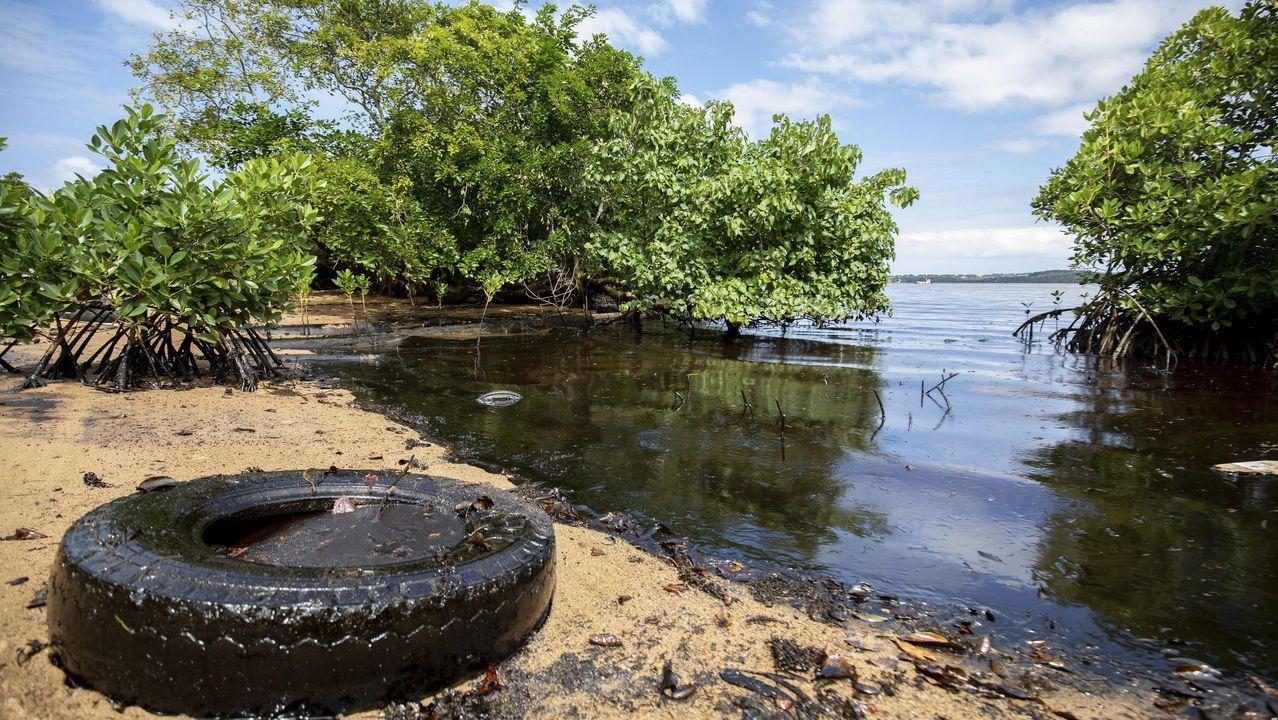 El avance del desastre ecológico obligó al Ejecutivo a declarar «el estado de emergencia medioambiental» por el grave riesgo que supone para los arrecifes, playas y albuferas cercanas