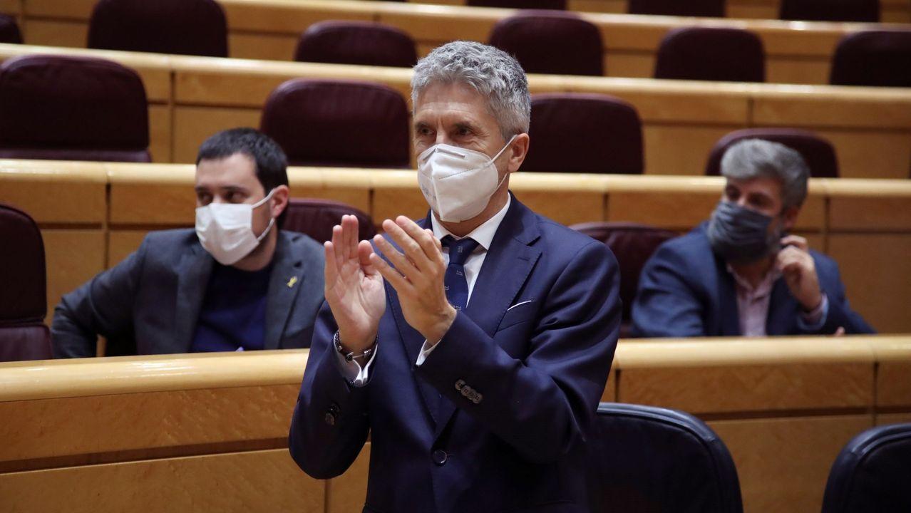 El ministro del Interior, Fernando Grande-Marlaska, este mércoles en el Senado