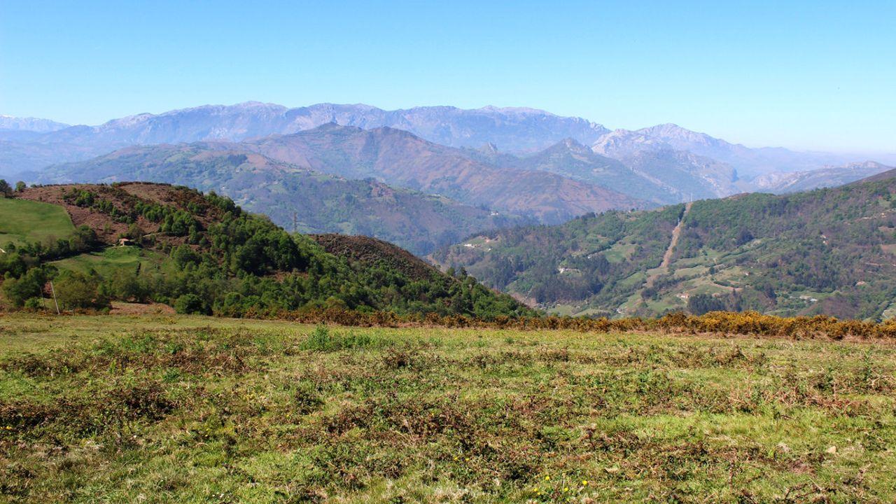 La manifestación del 1 de Mayo en Mieres en imágenes.Alto de La Teyerona, donde se repoblará forestalmente una finca municipal