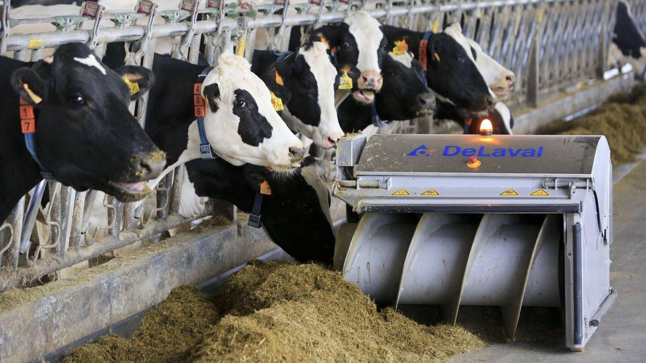 Los ganaderos reclaman que se valore un modelo de manejo ligado al medio ambiente y que respeta el bienes animal, no metiendo a todos en el mismo saco