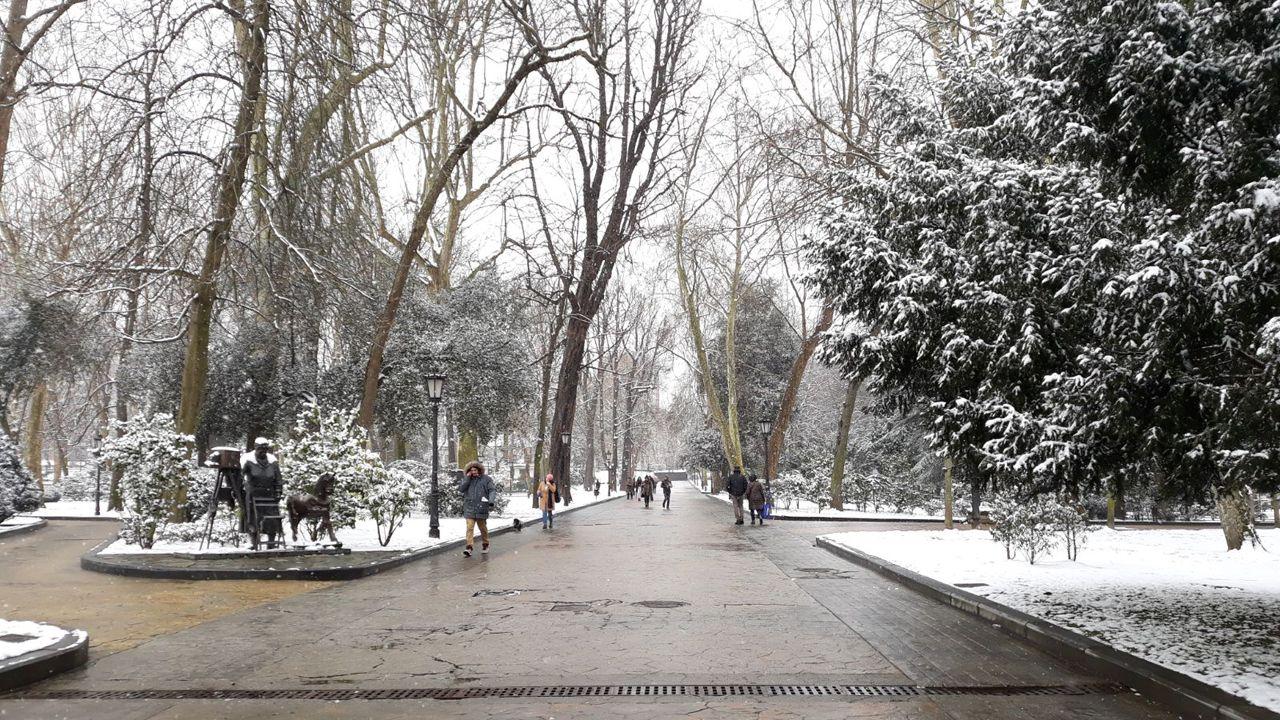 Nieve en Oviedo.El Parque San Francisco amanece completamente blanco