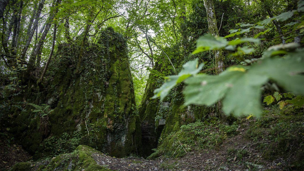El otoño favorece a este hábitat natural, pero la visita es siempre recomendable