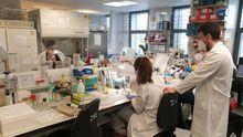 En el servicio de microbiología del Chuac, de guardia las 24 horas desde el inicio de la pandemia, trabajan 64 profesionales