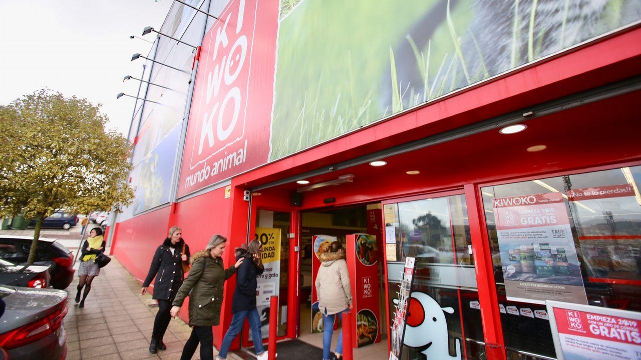 Roban a punta de pistola 16.000 euros en la tienda Kiwoko de Vigo