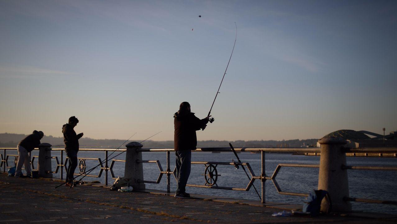 Los pescadores vuelven a lanzar sus cañas