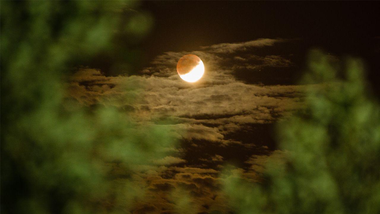 La luna se eleva, entre las nubes, sobre un parque de Ourense