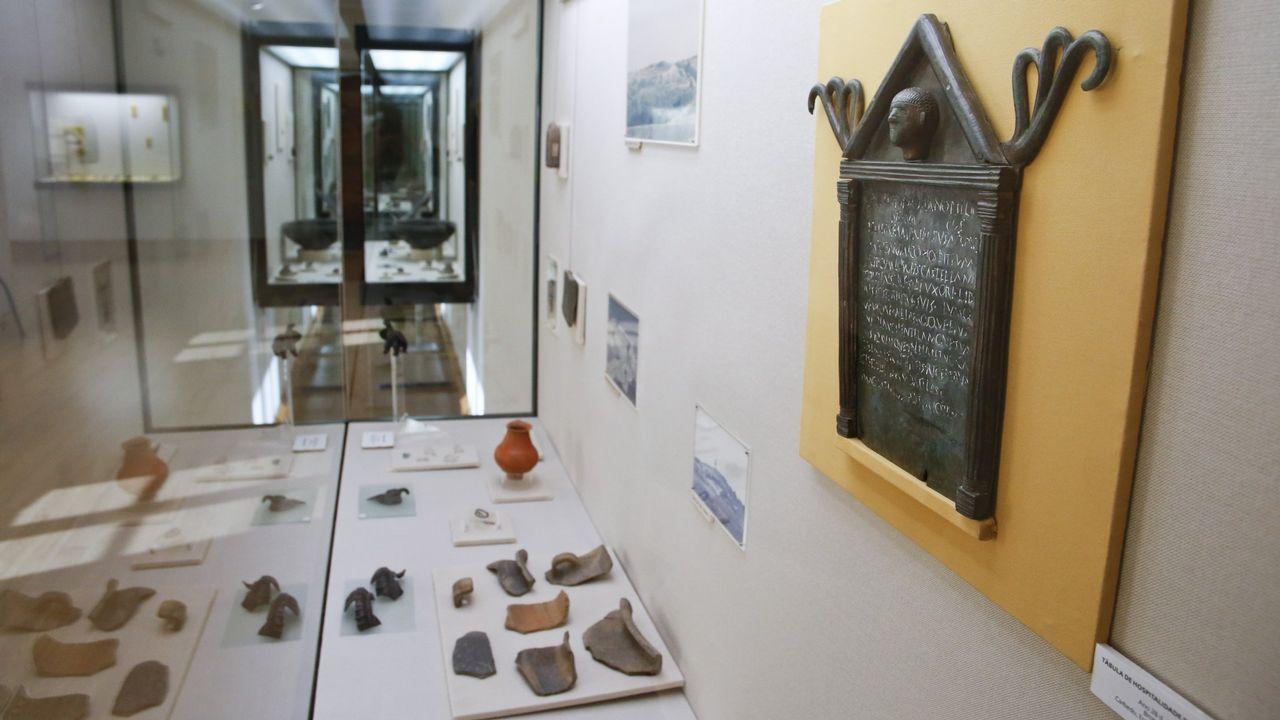 No campo hai futuro .Museo Provincial de Lugo