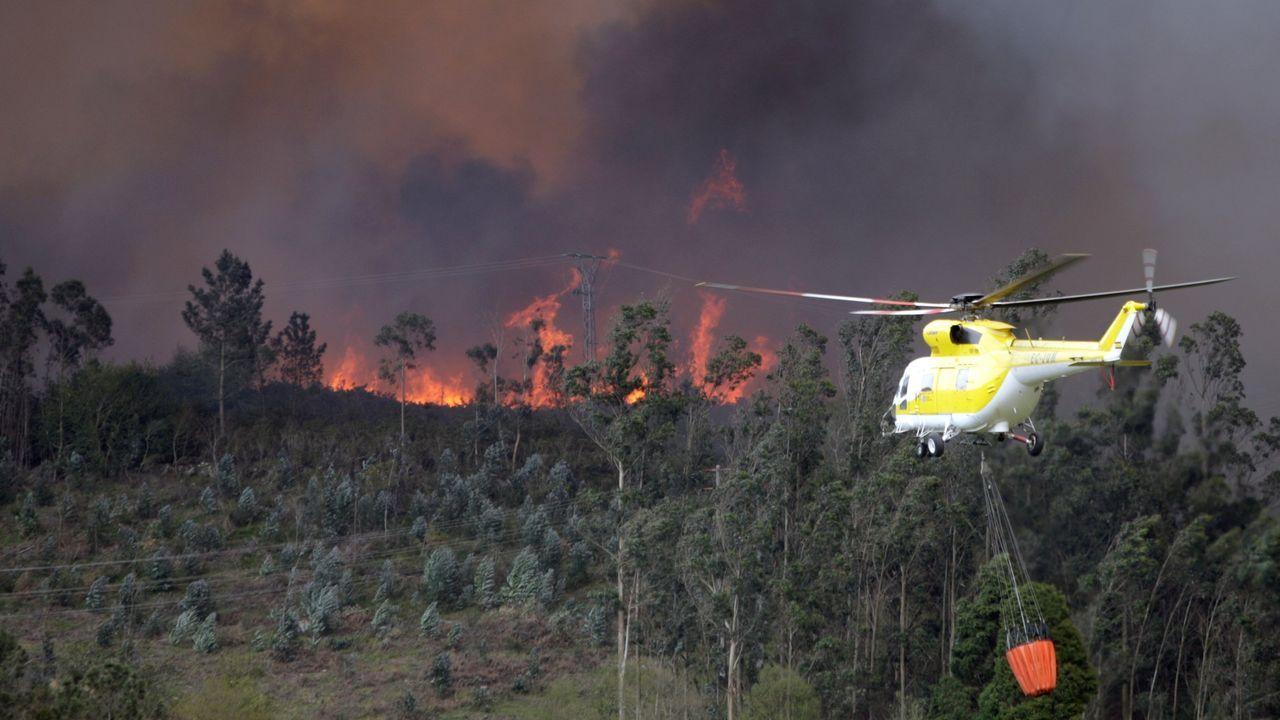 Un incendio destruyó una amplia superficie del parque natural en el año 2012