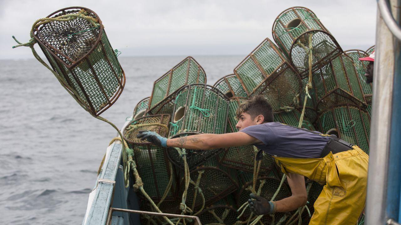 Captura del pulpo de la tripulación del barco Villar Blanco de Malpica