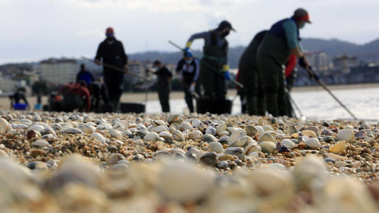 Conflicto entre las mariscadoras de Vilaboa y de Arcade por un banco marisquero.Pescadores y mariscadores de Barbanza, concentrados el pasado 26 de marzo en Ribeira, en protesta contra el futuro Reglamento de Control Pesquero de la UE