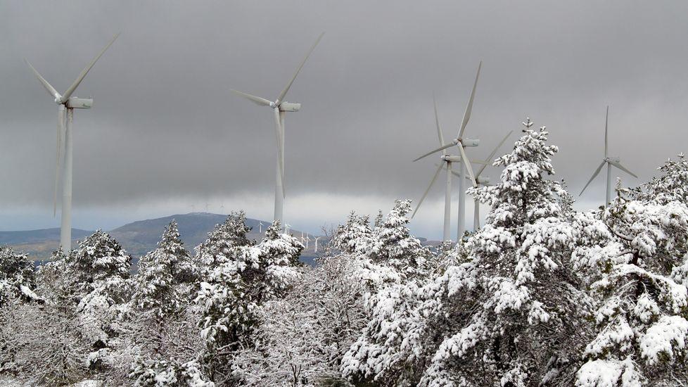 Los aerogeneradores del parque eólico Serra do Faro rodeados de nieve