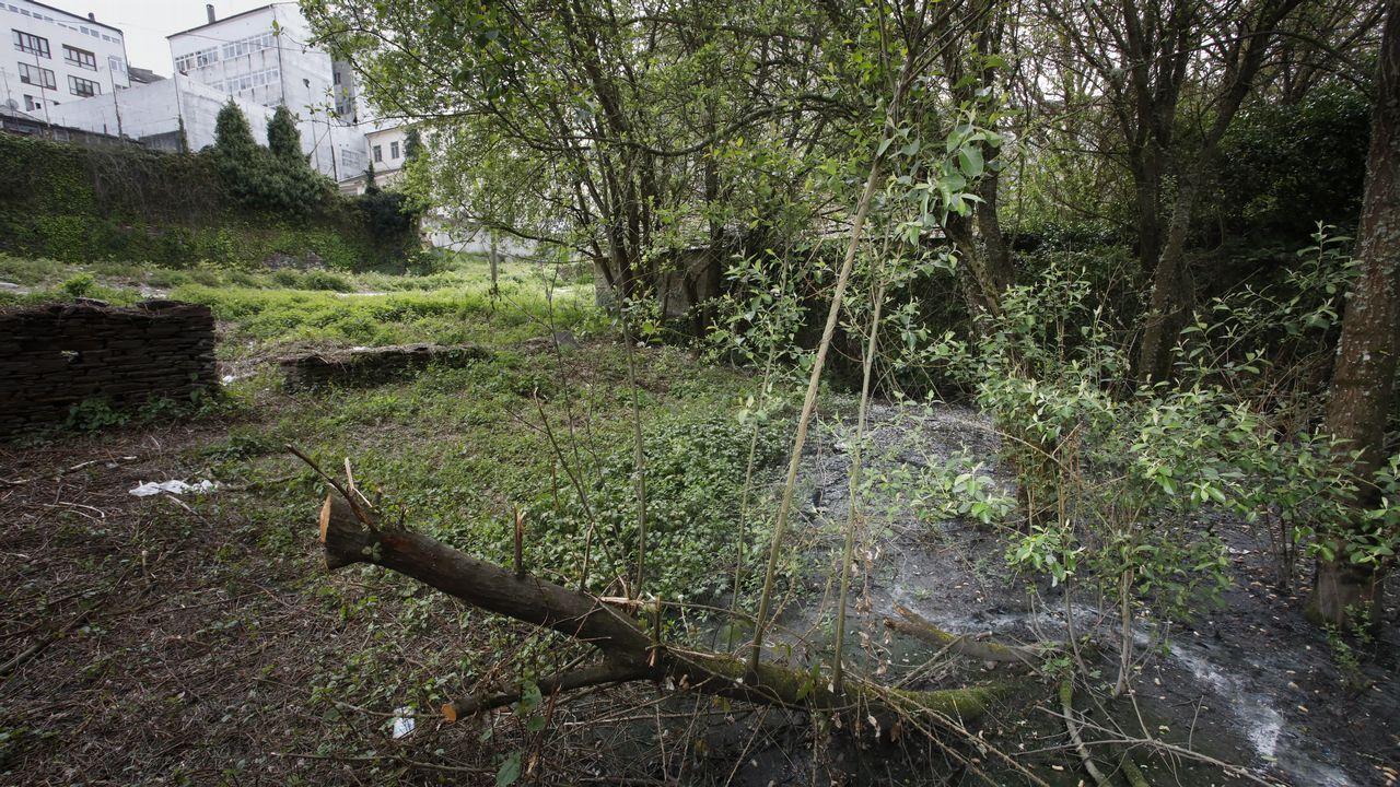 Vertidos de aguas fecales en el barrio del Carmen a pie del Camino Primitivo