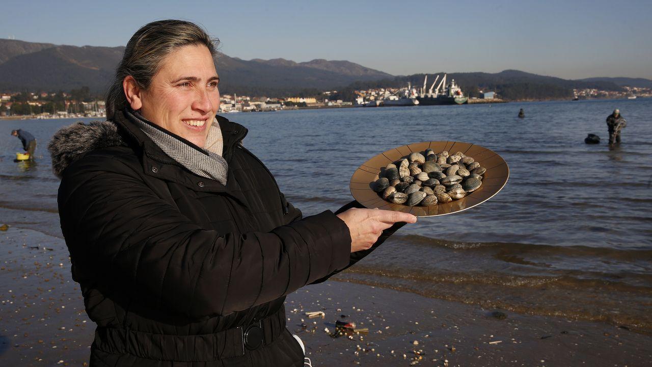 Marisco muerto cubre las playas de Rianxo