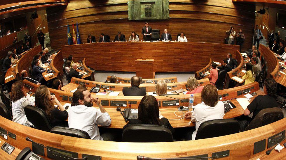 El pleno de la Junta General del Principado en su constitución.