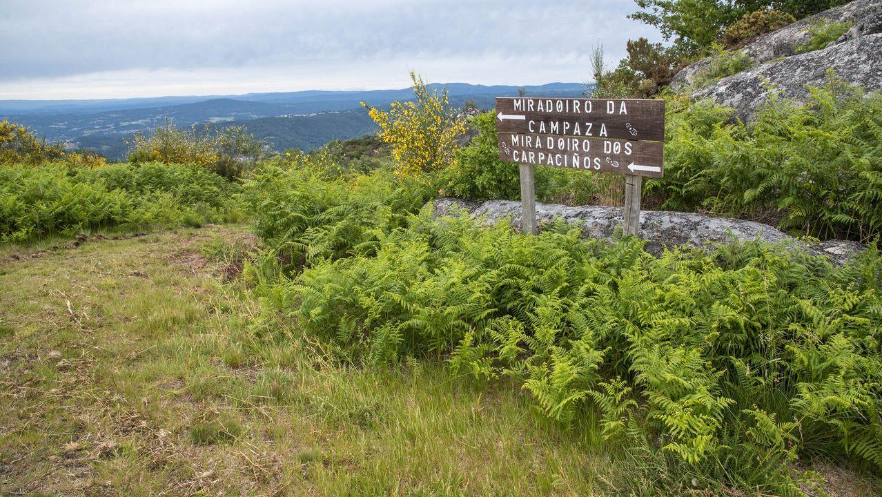 Un letrero indica la dirección de los miradores de A Campaza y Os Carpaciños