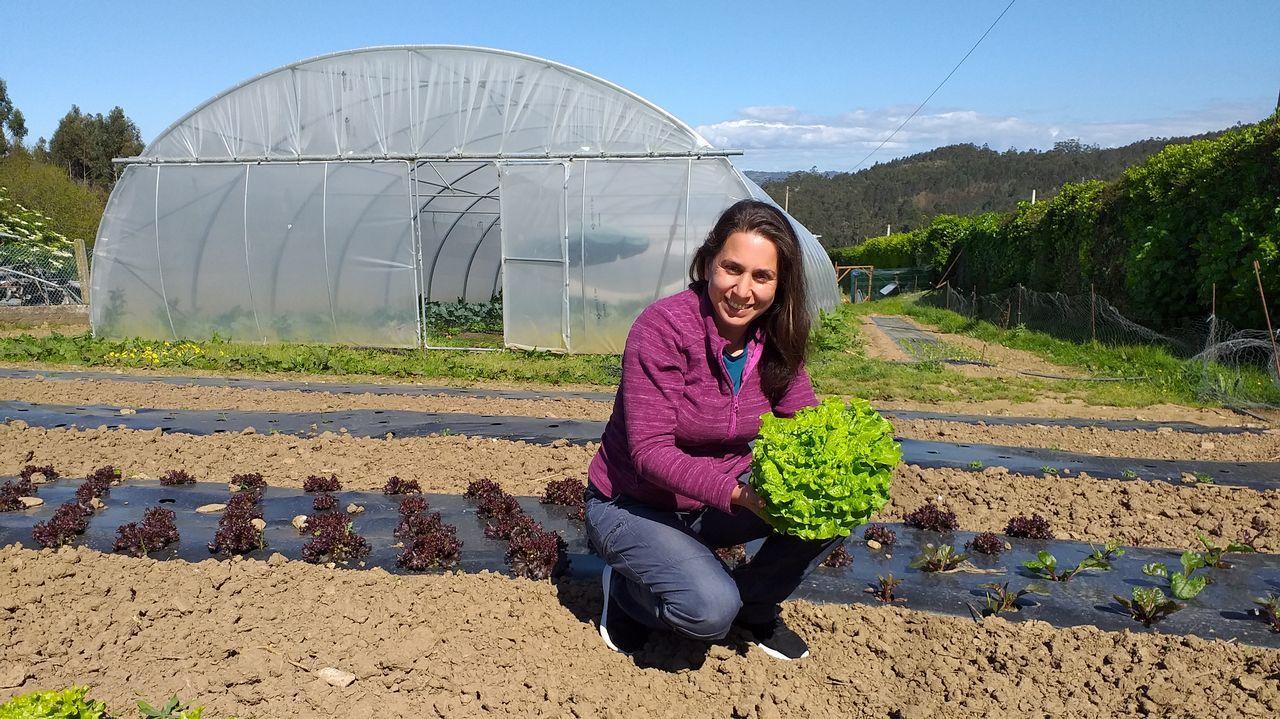 Leticia Pan, productora de verduras