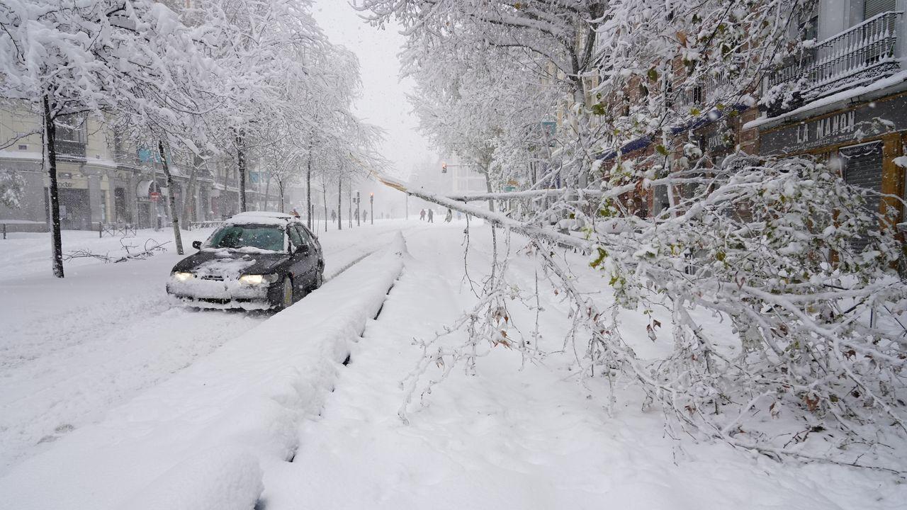 Muchas ramas han cedido al peso de la nieve en varias calles de Madrid