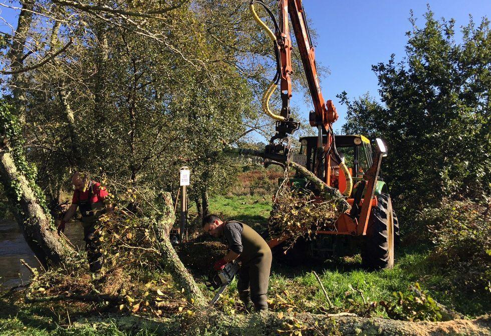 La entidad soneirana necesitó tres tractores para retirar los troncos y maleza del cauce.