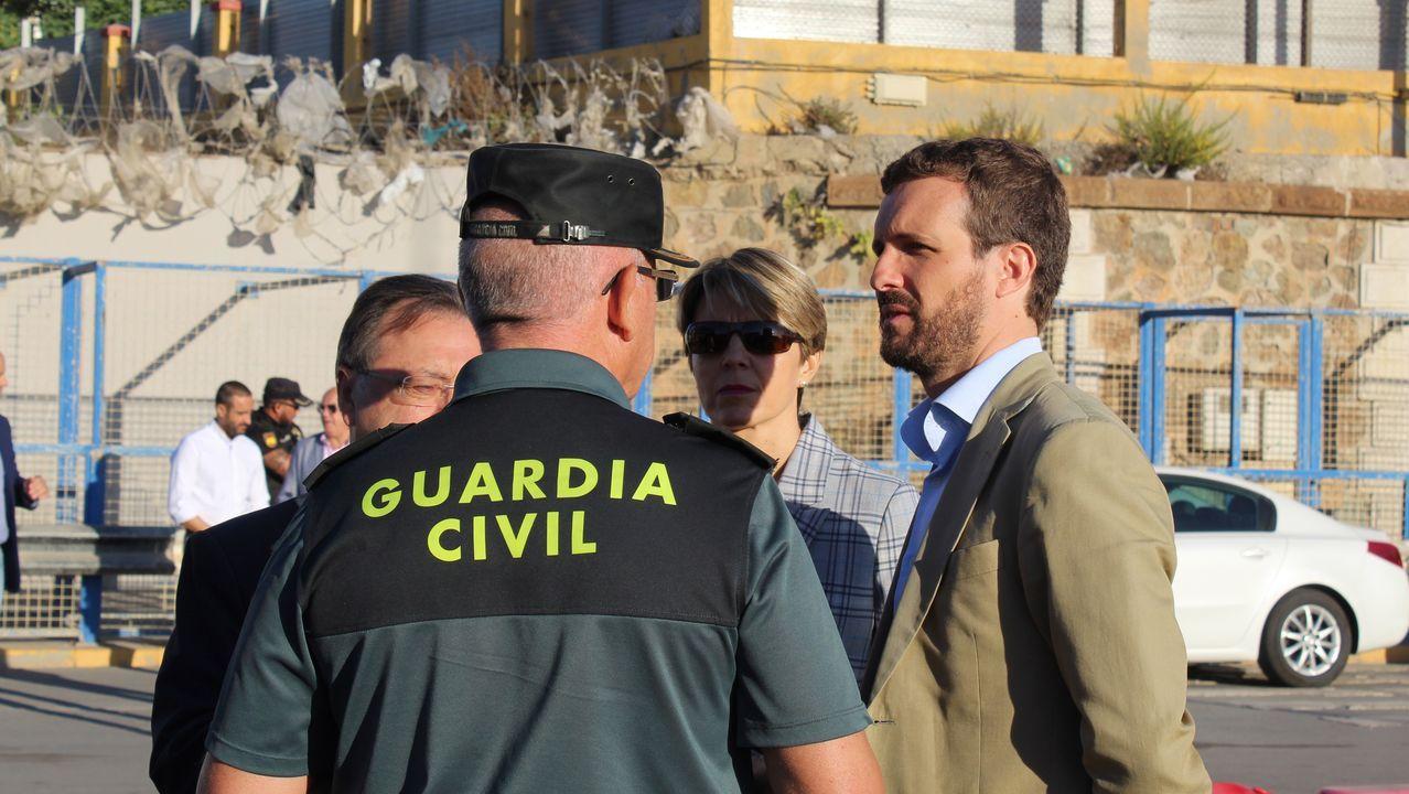 Talan la palmera que quedaba en Ravella.Pablo Casado, este viernes en Ceuta