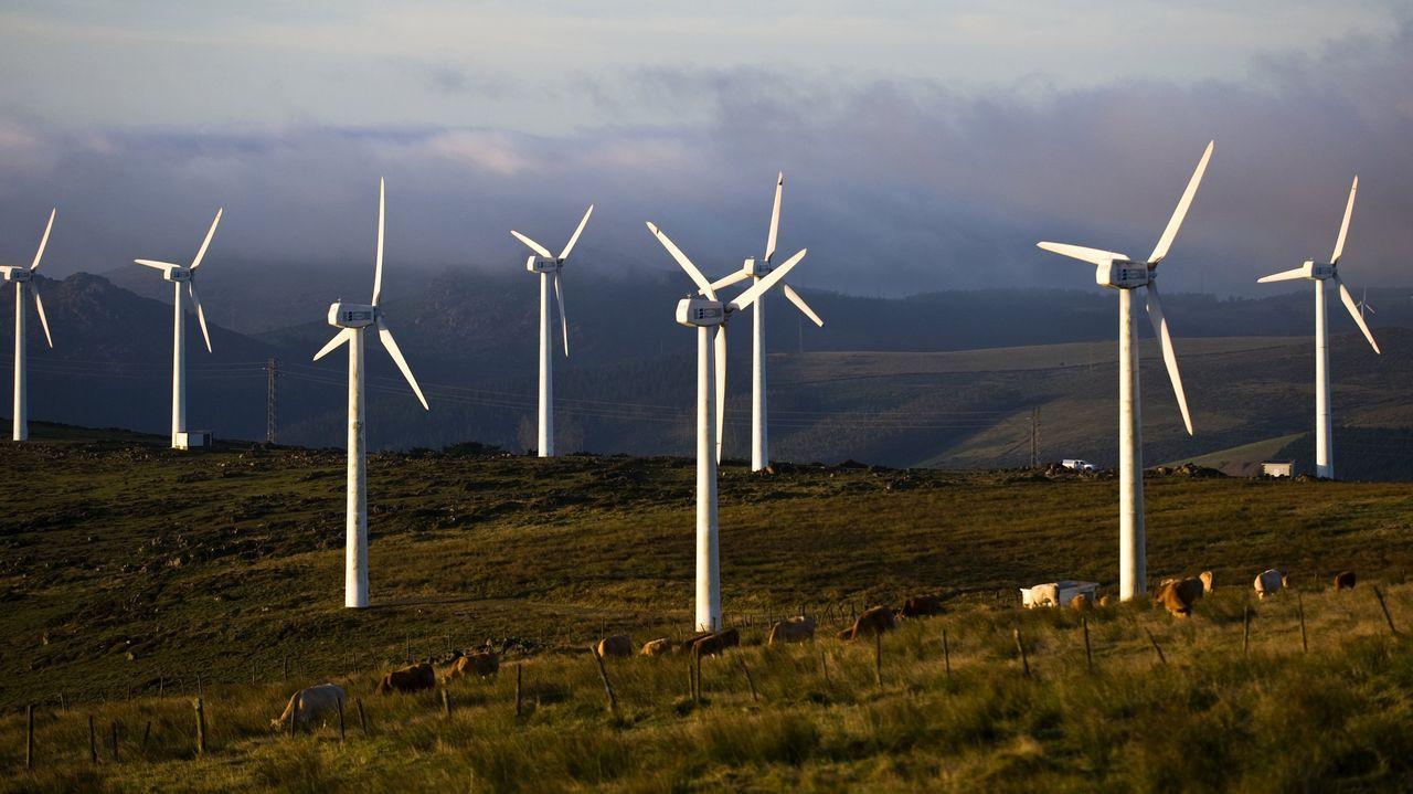 Statkraft creará un polo eólico en Ourense.Parque eólico de Paxareiras
