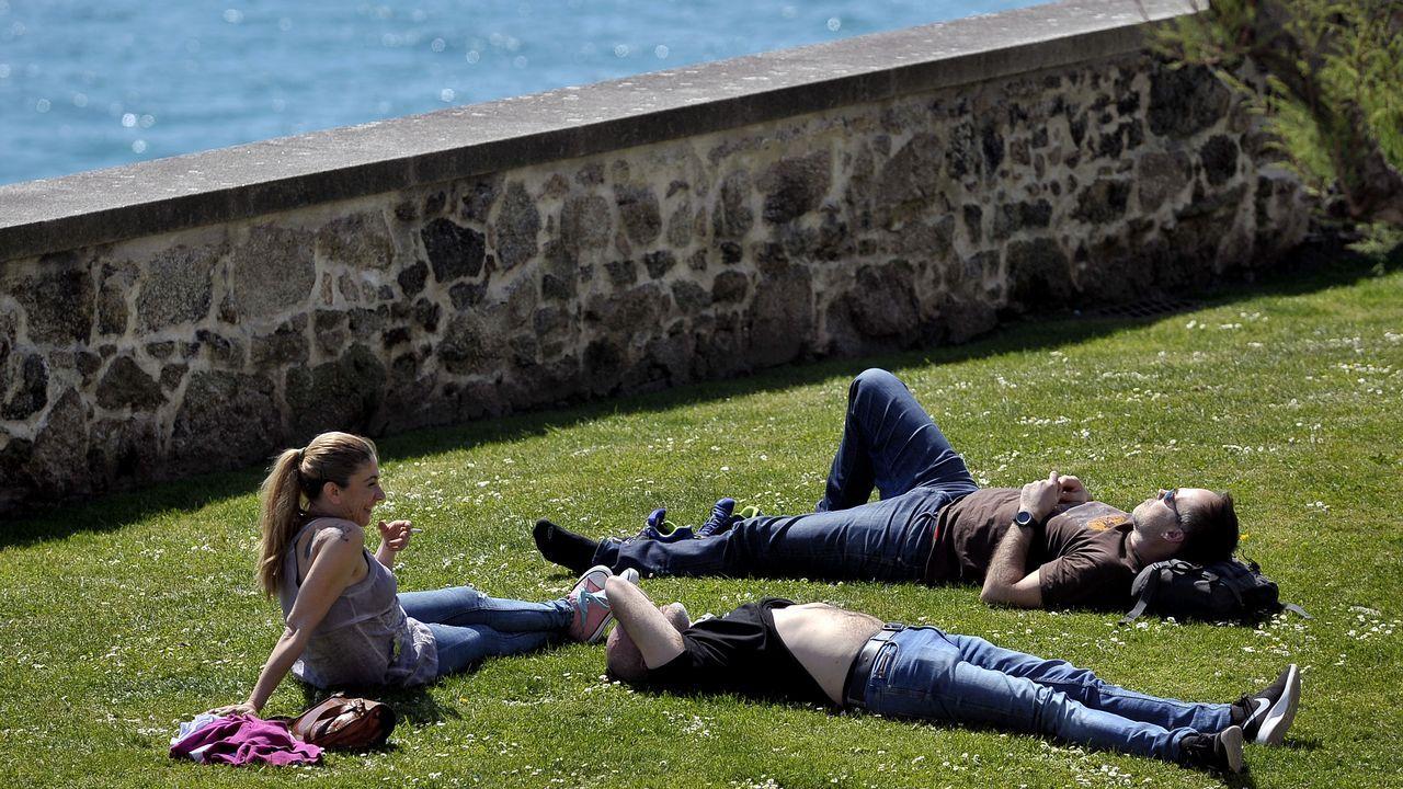 Ataque de perros a ganado en Vilar de Ulloa.Buen tiempo en A Coruña